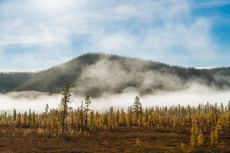 Nature scenery in Russia 写真素材
