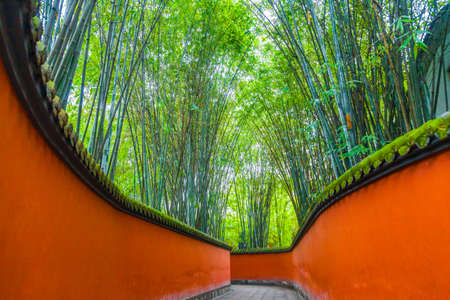 Passage between red walls surrounded by bamboos, chengdu, china. Stock fotó