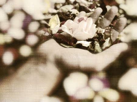 Beautiful flower held in hand.