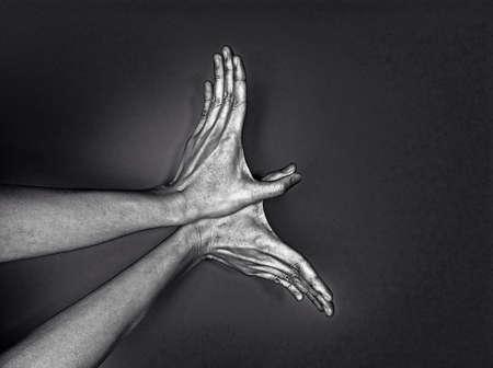 Bird made of hands.