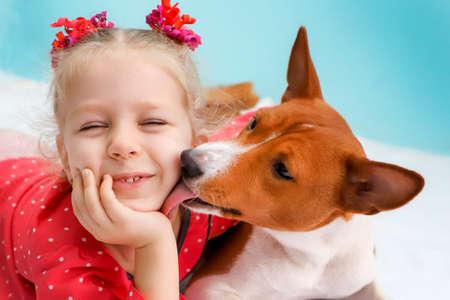 Little blonde curly girl hugging a red basenji dog. A dog licks a girl's cheek.