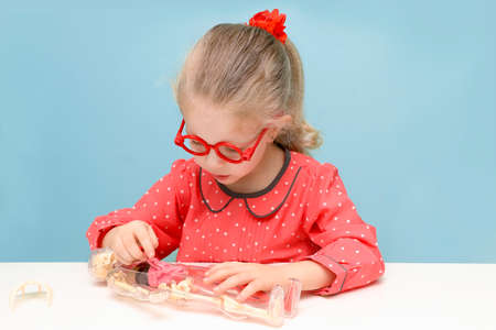 Little funny blonde girl with red glasses explore the structure of human body. The skeleton of a man with insides. Early childhood development.