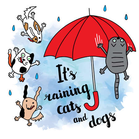 """""""It's raining cats and dogs"""" autumn card. Falling raindrops and umbrella with cats and dogs. Bright autumn postcard. Vector illustration."""