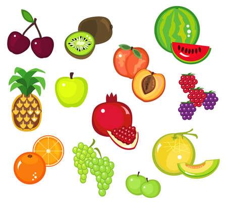 melon: Illustration of various fruits - part 2