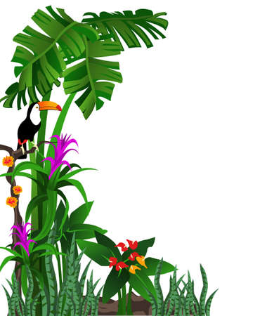 Background illustration of a tropical forest with flowers and a toucan