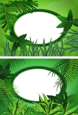 Two background illustrations of tropical forest with frame for text
