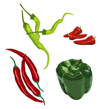 peppers: Clip-arts of various peppers Illustration