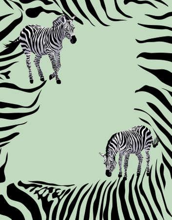 Background illustration with zebras   Vector