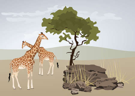 bush babies: Giraffe illustration with wild landscape of Africa Illustration