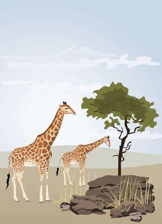 Giraffe illustration with wild landscape of Africa Stock Vector - 7030649