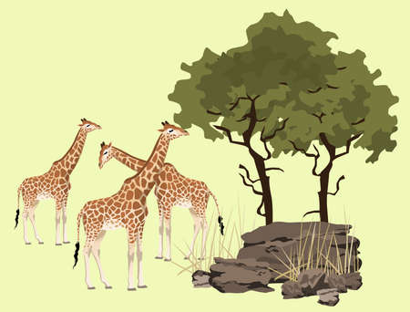 bush babies: Abstract giraffe illustration with rocks and tree