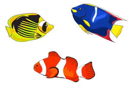 Ilustraciones de peces tropicales aisladas sobre fondo blanco Ilustración de vector