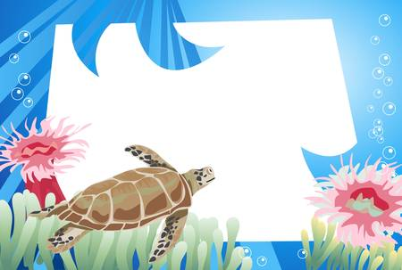 sea weed: Tropical underwater scene with white space for text
