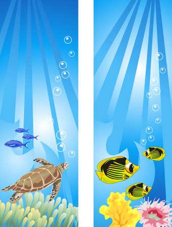 tortue de terre: Illustrations de fond de sc�ne sous-marin tropical Illustration