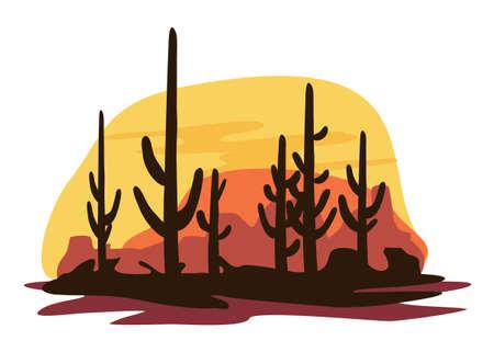 mexican art: Cactus e deserto