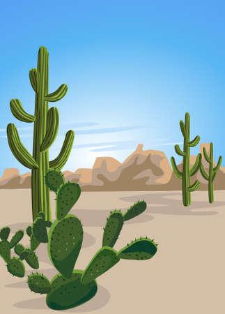 the desert: Cactus and Desert