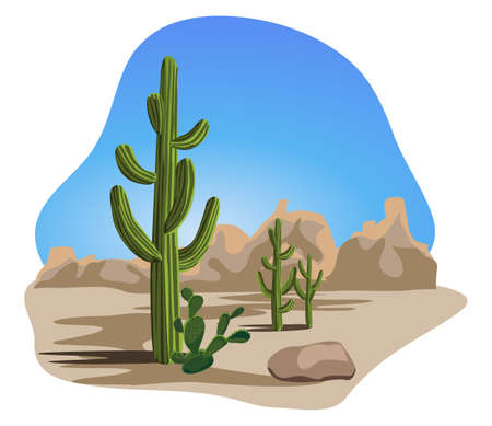 Cactus and Desert Vector