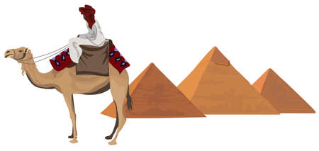 camels: Background illustration with a bedouin and the pyramids of Giza Illustration
