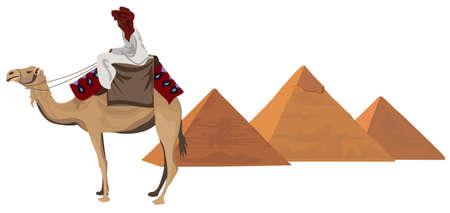 camello: Ilustración de fondo con un beduino y las pirámides de Giza
