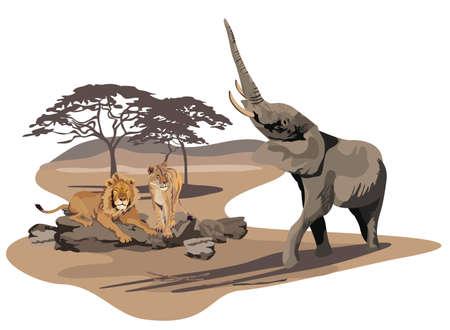 continente africano: Ilustración de los elefantes africanos y leones en la sabana
