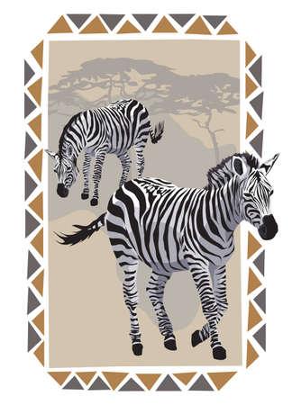 continente africano: Marcos para ilustración africana con cebras en la sabana