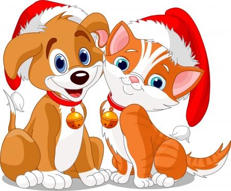 dog christmas: Christmas dog and cat