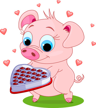 cute pig: Cute little piglet holding a heart shape valentine box of chocolates