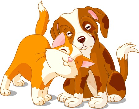 Brown dog and red cat love one anther