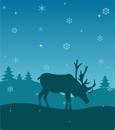 Winter deer Vector