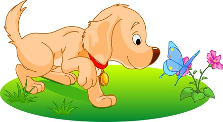 The nice Labrador puppy plays with butterfly. Vector