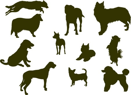Dog silhouette collection. Vector Illustration Vector
