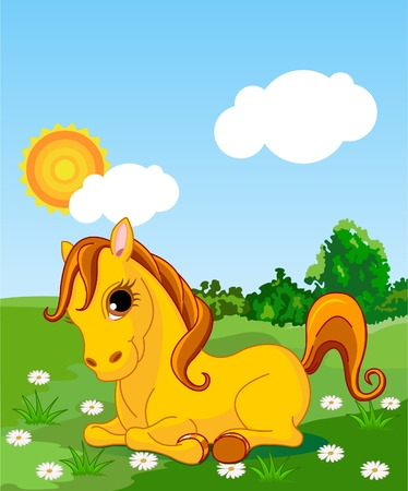 A cute horse sitting in the meadow  on a sunny day. Background is separate paths and can be moved or removed.