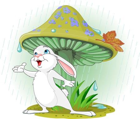 Cute konijn dragen regenkleding onder paddestoel