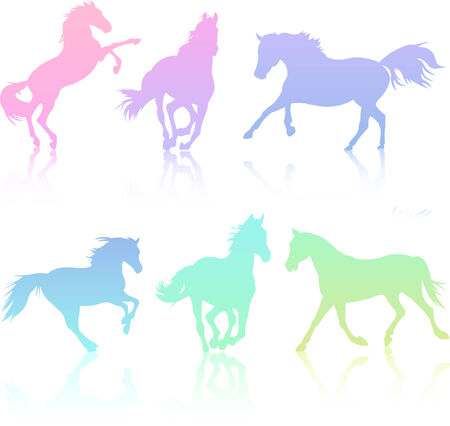 Set of rainbow-colored horse silhouette collection