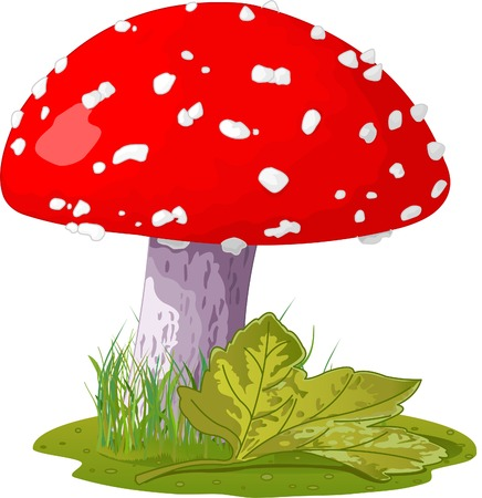 toadstool: Fly agaric in a grass. Vector Illustration