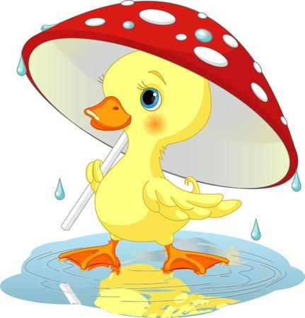アヒル: きのこの傘の下でかわいいアヒルの子を着て雨ギアします。