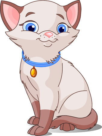 dorombolás: Cute Cat, pointed siamese. Vector illustration