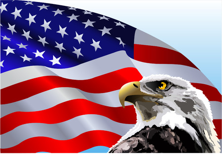 eagle: Bald eagle in front of an American flag.