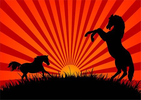 Dos siluetas de caballos en un campo al atardecer Ilustración de vector