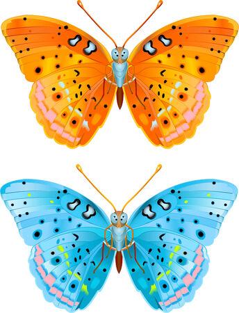 Twee verschillende gekleurde vector vliegen butterflies