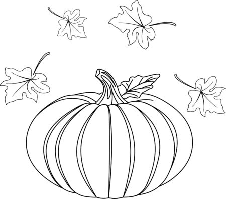 Black and white Pumpkin and leafs for coloring   Ilustracja