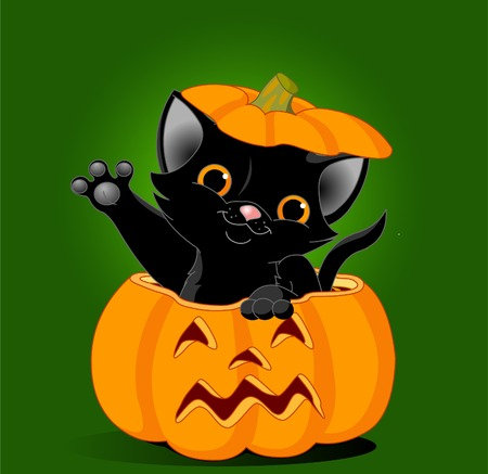 Black kitten jumping out from a Halloween pumpkin. Background is separate
