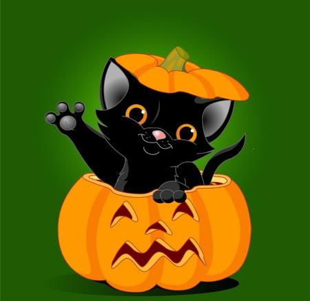 separato: Gattino nero che salta fuori da una zucca di Halloween. Sullo sfondo � separato Vettoriali