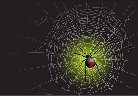 Halloween spider web background. Vector illustration layered Stock Vector - 5614098