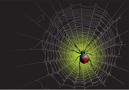 Halloween spider web background. Vector illustration layered