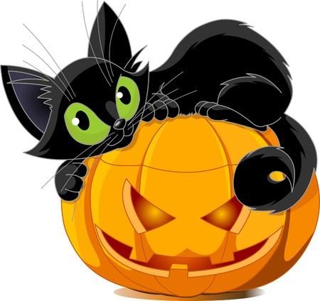 autumn cat: A cute black cat lying on a pumpkin. Illustration