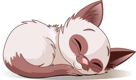 cartoon poes:  illustratie van het slapen leuk Siamese katje