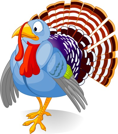 thanksgiving turkey: Cartoon turkey strutting with plumage, isolated on white background
