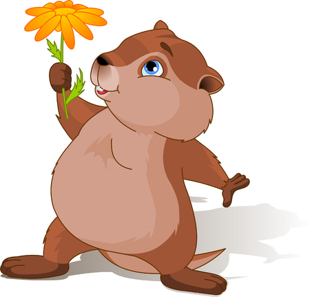 A cartoon groundhog holding a first spring flower. Illustration