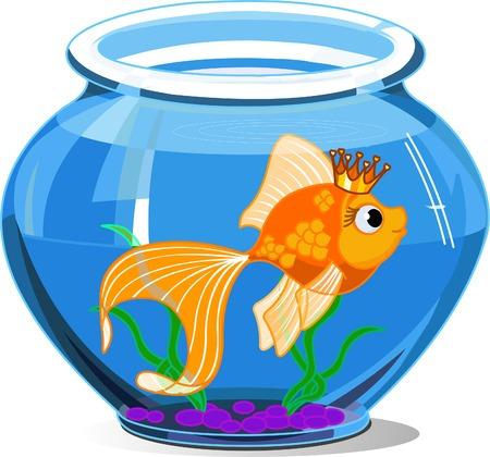 흰색 배경에 수족관에서 황금 물고기 일러스트